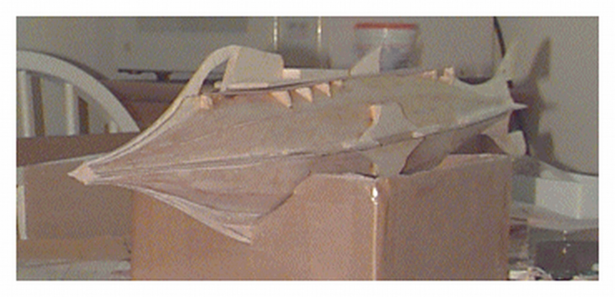 This view shows the deck in place and the supports (backing) for the large observation windows on the side of the hull