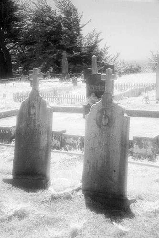 Cuffy's Cove cemetery