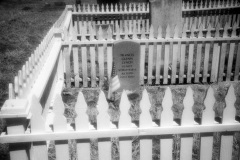 Cuffy's Cove cemetery