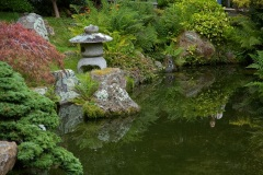 Golden Gate Park, Japanese tea Garden