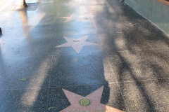 Hollywood Walk of Fame, Nancy Wilson and Mickey Rooney stars