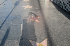 Hollywood Walk of Fame, Anne Baxter and Harold Robbins stars