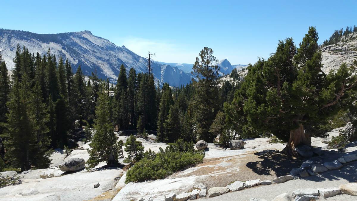 Yosemitee National Park along Tioga pass