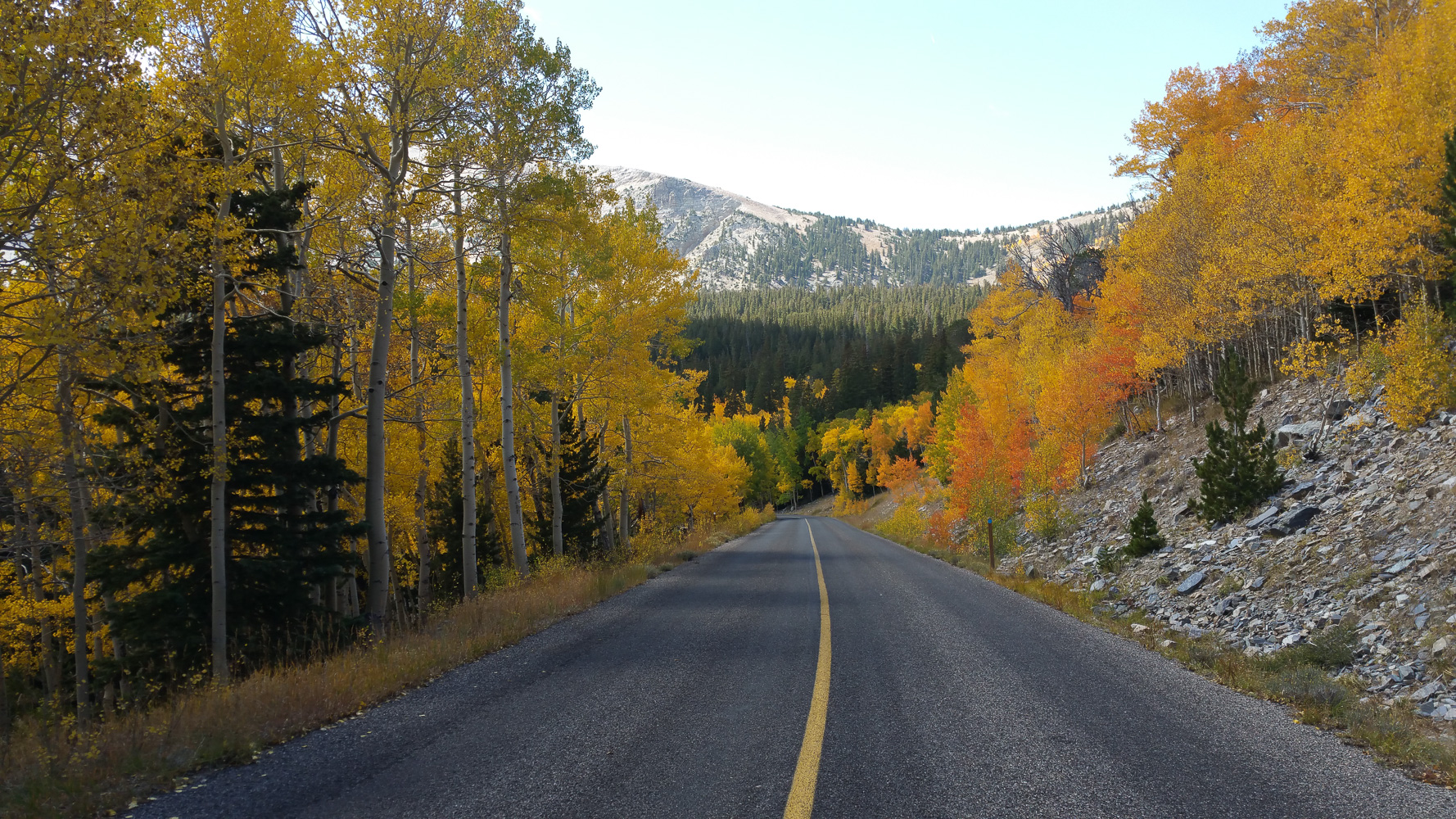 Driving into the Great Basin National Park and finally finding some color at the upper elevations