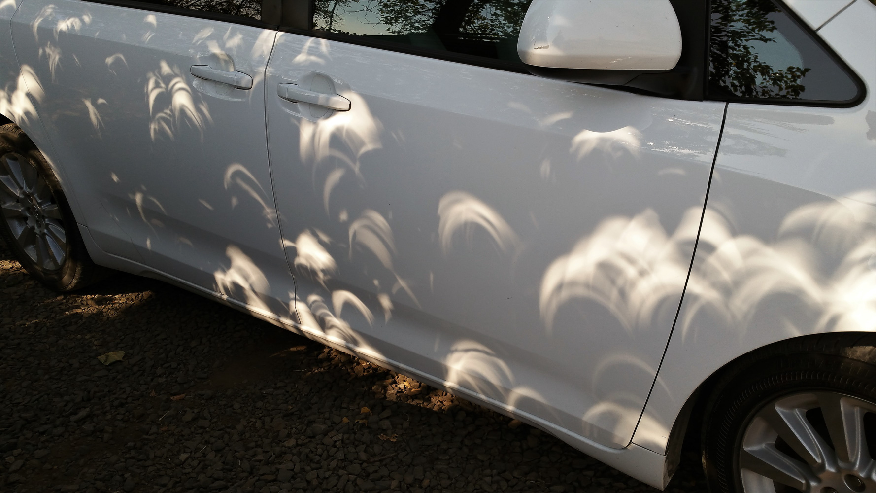 When there is an eclipse the shadows under a tree will show you the current state. Were very close to totality at this point.