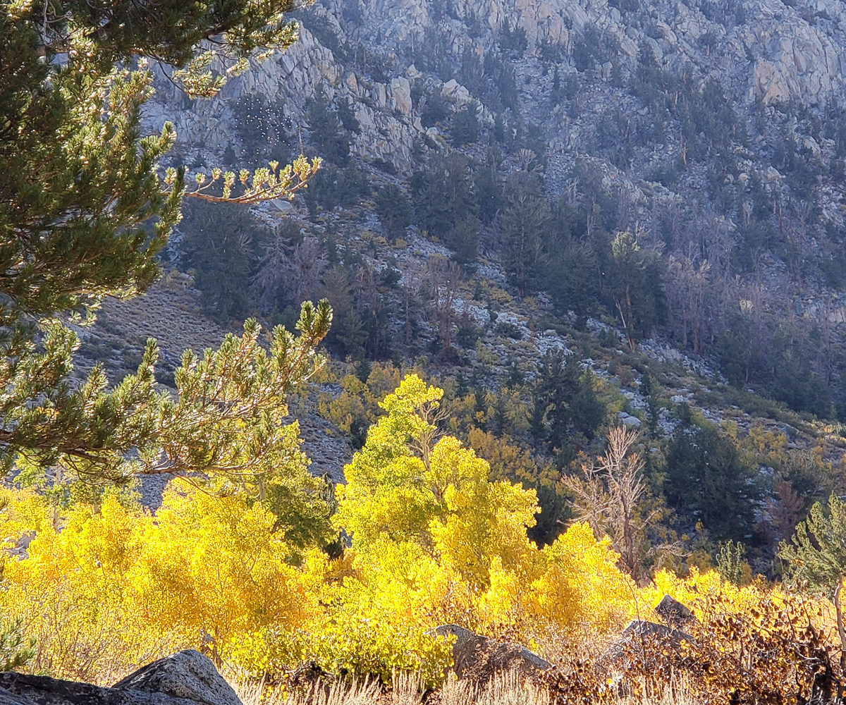Eastern Sierra – Oct 2019 – CA