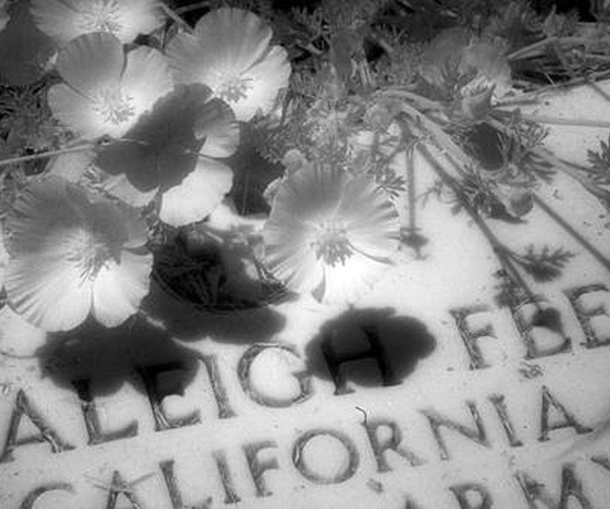 Westport Cemetery, Westport CA, May 2007